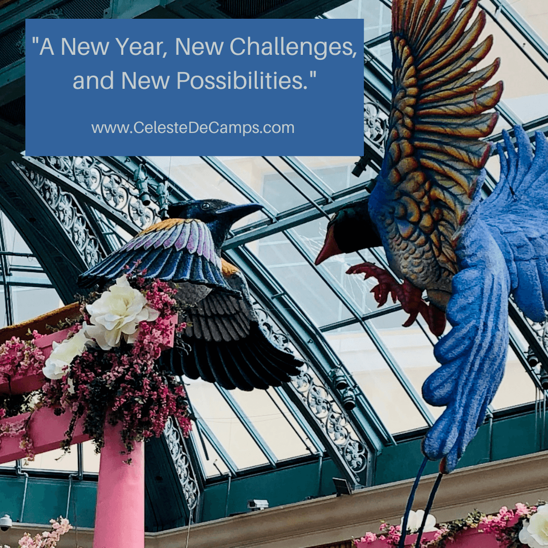 """A New Year, New Challenges, and New Possibilities."""