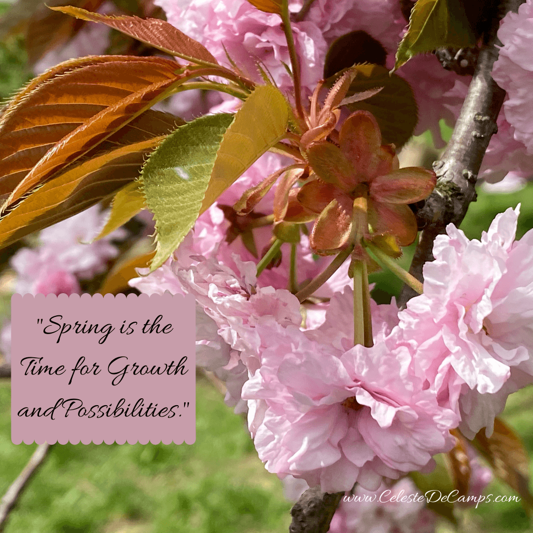 """Spring is the time for growth and possibilities."""